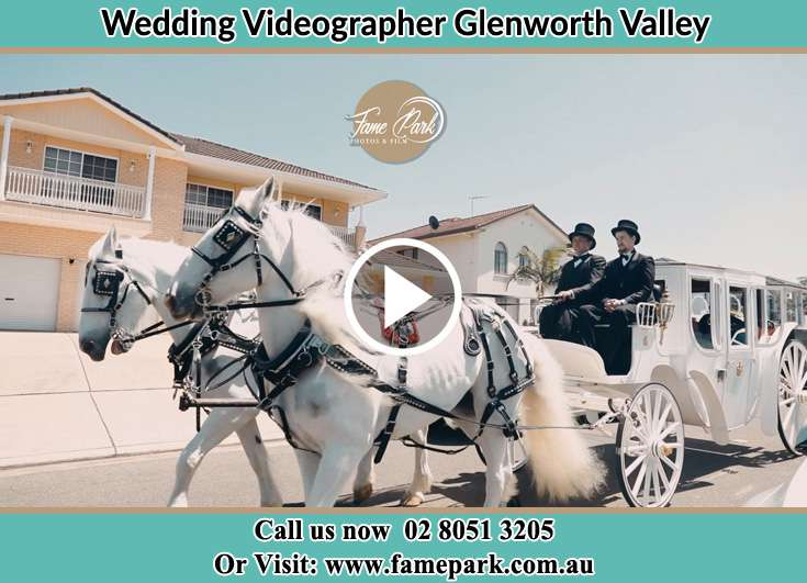 Bride wedding carriage Glenning Valley NSW 2261