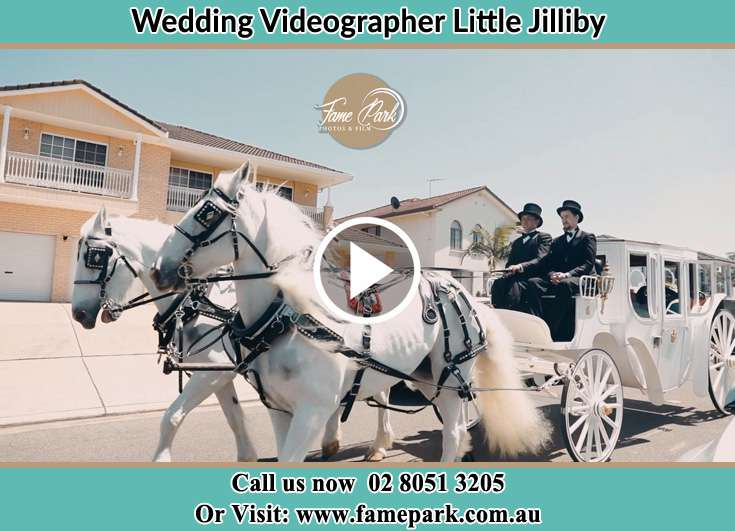 Bride wedding carriage Little Jilliby NSW 2259